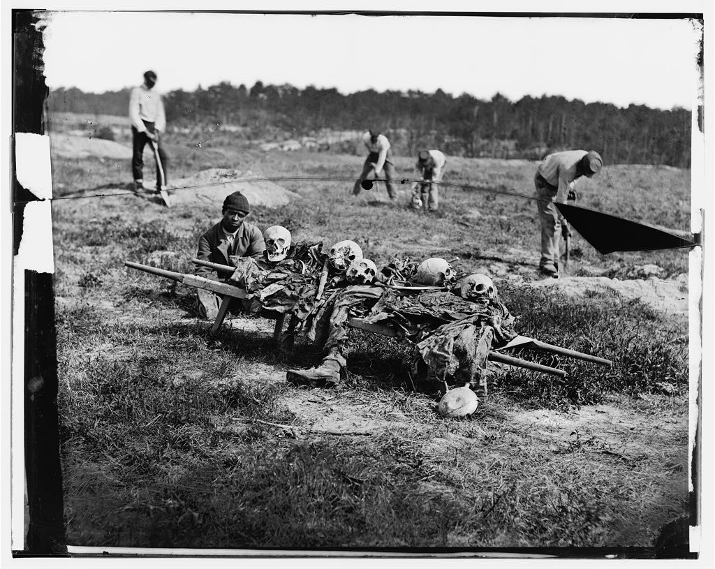 At Cold Harbor, Virginia, African American men gather up the bones of Civil War soldiers killed in battle.