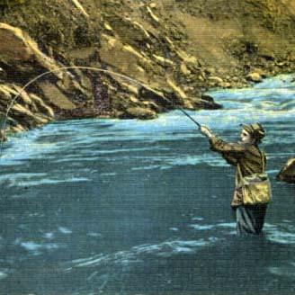 Featured State Adoption -- Image of a man fly fishing