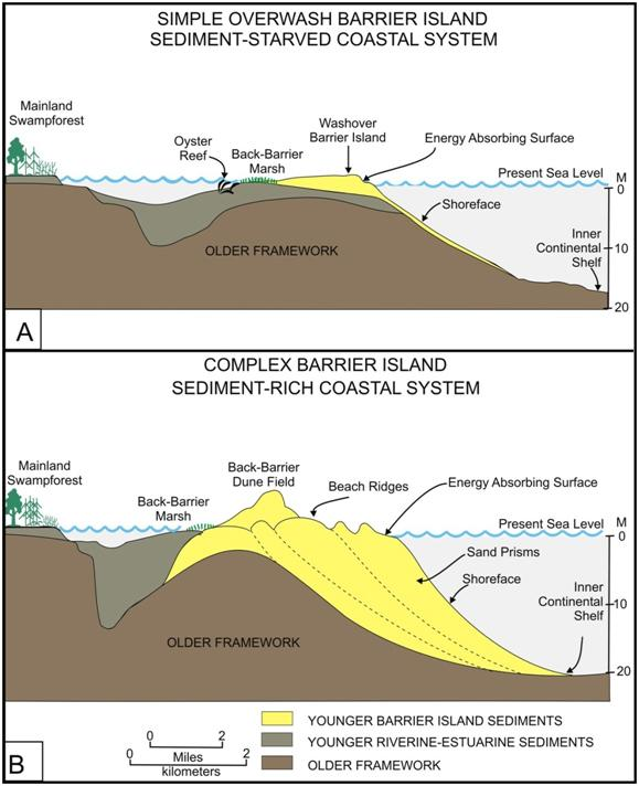Cross Section Diagrams Of Simple And Complex Barrier Islands Ncpedia