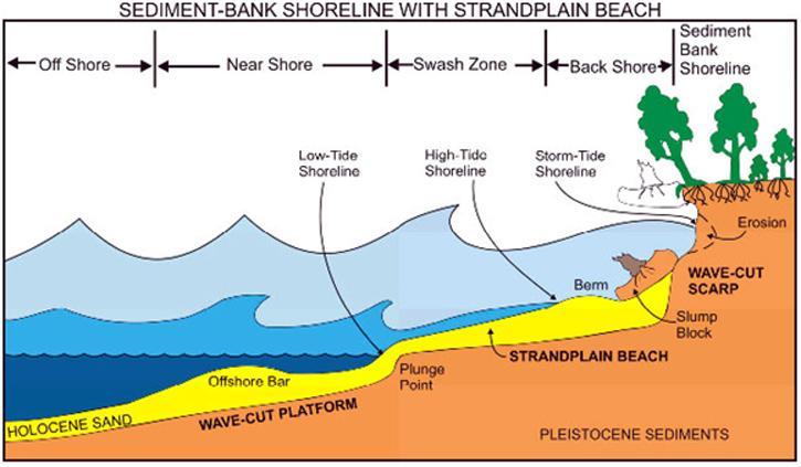 Schematic model of a sediment-shoreline | NCpedia