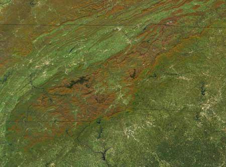 "<img typeof=""foaf:Image"" src=""http://statelibrarync.org/learnnc/sites/default/files/images/blue_ridge_sat.jpg"" width=""450"" height=""332"" alt=""The Blue Ridge"" title=""The Blue Ridge"" />"
