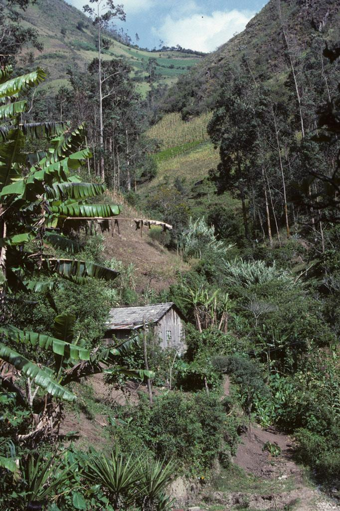 """<img typeof=""""foaf:Image"""" src=""""http://statelibrarync.org/learnnc/sites/default/files/images/ecuador_021.jpg"""" width=""""682"""" height=""""1024"""" alt=""""A hut in the hills above Banos"""" title=""""A hut in the hills above Banos"""" />"""