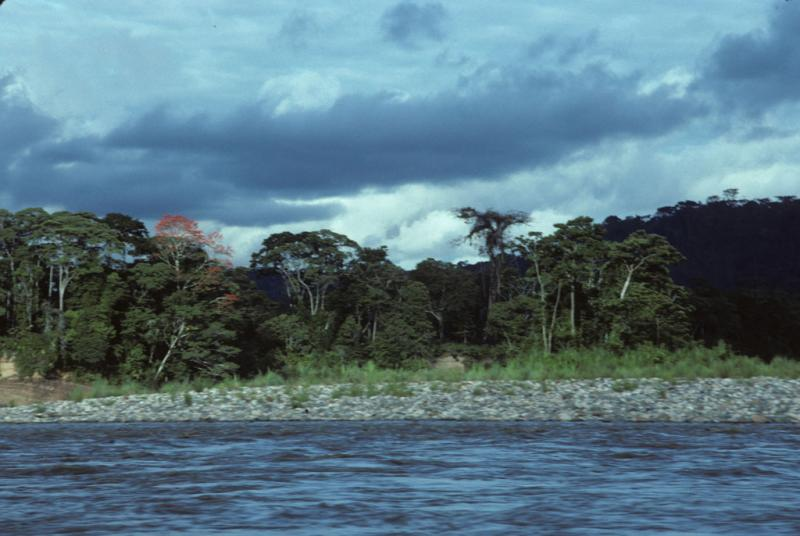 "<img typeof=""foaf:Image"" src=""http://statelibrarync.org/learnnc/sites/default/files/images/ecuador_198.jpg"" width=""1024"" height=""686"" />"