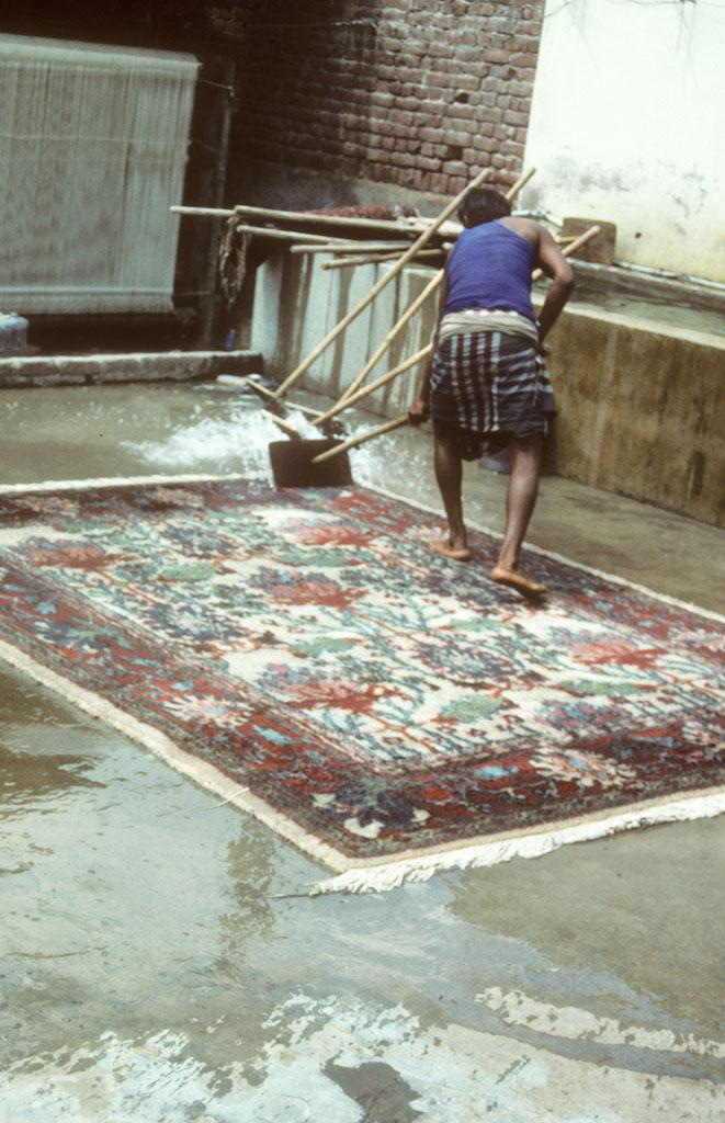 """<img typeof=""""foaf:Image"""" src=""""http://statelibrarync.org/learnnc/sites/default/files/images/india_143.jpg"""" width=""""661"""" height=""""1024"""" alt=""""A man washing carpet, Agra, India"""" title=""""A man washing carpet, Agra, India"""" />"""