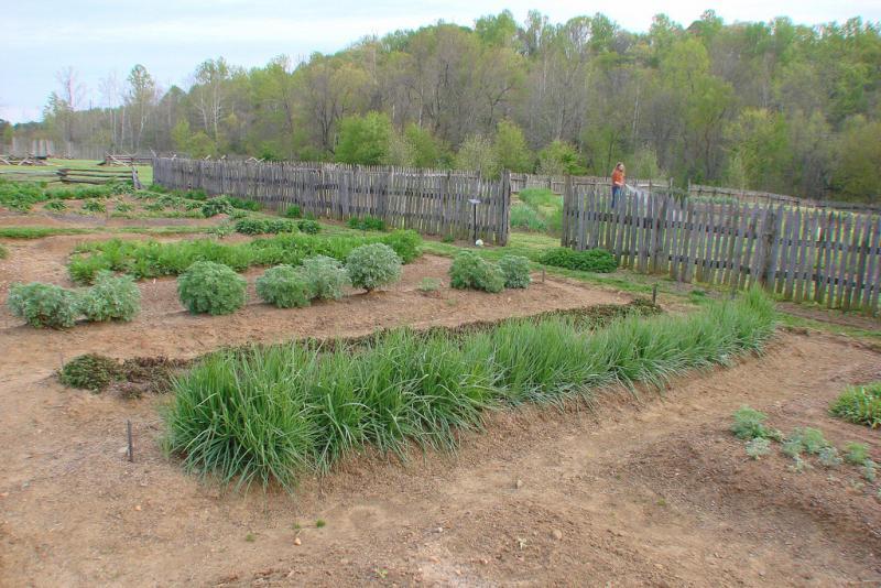 "<img typeof=""foaf:Image"" src=""http://statelibrarync.org/learnnc/sites/default/files/images/moravian_garden.jpg"" width=""1024"" height=""683"" alt=""Moravian garden"" title=""Moravian garden"" />"