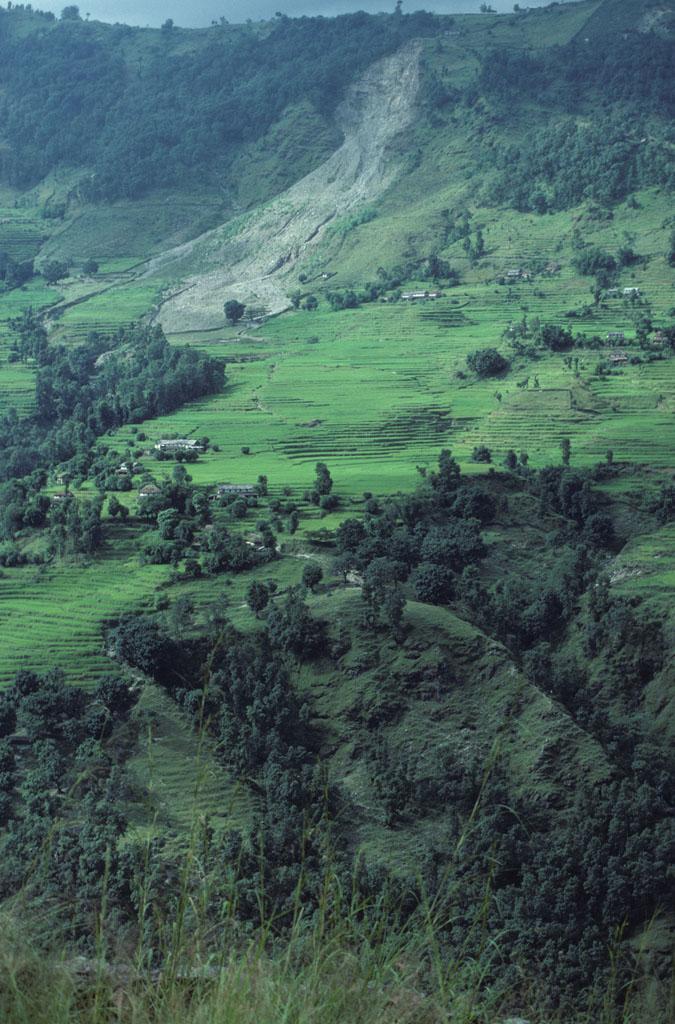 "<img typeof=""foaf:Image"" src=""http://statelibrarync.org/learnnc/sites/default/files/images/nepal_031.jpg"" width=""675"" height=""1024"" alt=""Terraced fields of Naudanda, Nepal"" title=""Terraced fields of Naudanda, Nepal"" />"