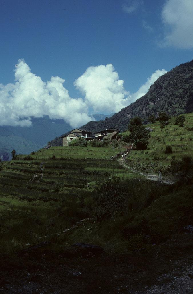 """<img typeof=""""foaf:Image"""" src=""""http://statelibrarync.org/learnnc/sites/default/files/images/nepal_055.jpg"""" width=""""675"""" height=""""1024"""" alt=""""A village on a hillside, terraced fields and white clouds"""" title=""""A village on a hillside, terraced fields and white clouds"""" />"""