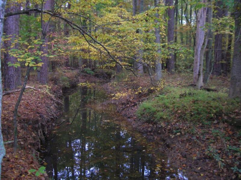 "<img typeof=""foaf:Image"" src=""http://statelibrarync.org/learnnc/sites/default/files/images/upper_mudcreek2.jpg"" width=""1024"" height=""766"" alt=""Upper Mud Creek"" />"