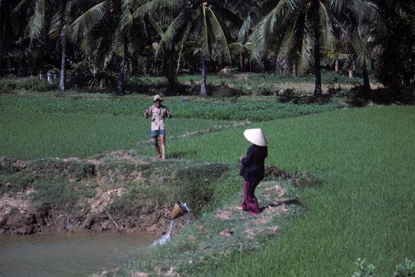 "<img typeof=""foaf:Image"" src=""http://statelibrarync.org/learnnc/sites/default/files/images/vietnam_068.jpg"" width=""600"" height=""400"" />"