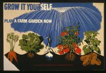 Grow it yourself: Plan a farm garden now