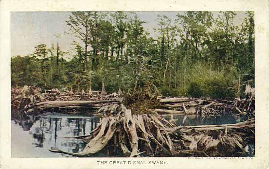 "Colorized photo of ""The Great Dismal Swamp."" 1907. Jamestown Amusement and Vending Company"