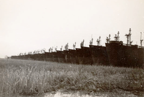Mothball Fleet of Liberty ships near Wilmington, N.C., 1949. Image from the New Hanover County Public Library.