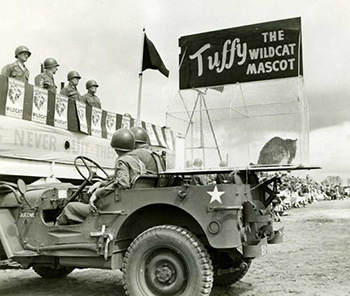 """Tuffy,"" the mascot of the 81st Division in World War II. Image from the North Carolina Museum of History."
