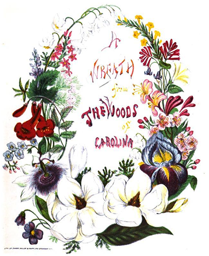 Colored engraving of the title illustration for A Wreath from the Woods of Carolina. Image from Google Books.