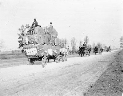 Cotton and wood being transported, 1890