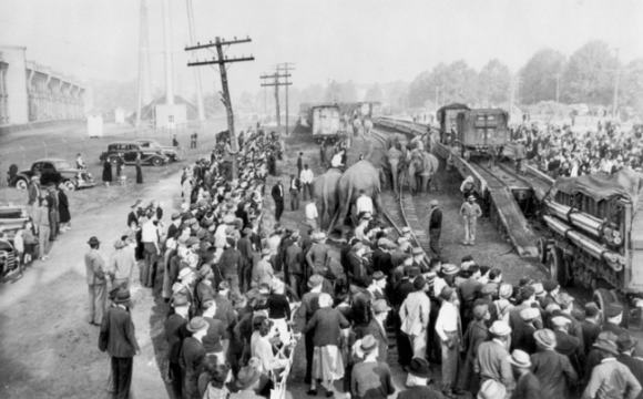 Arrival of the Barnum & Bailey Circus train at Durham, 1940. North Carolina Collection, University of North Carolina at Chapel Hill Library. Courtesy of J. Marvin Black.