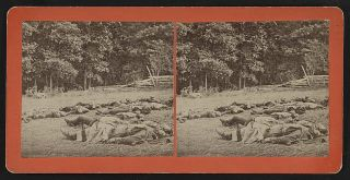 """Confederate dead gathered for burial at the southwestern edge of the Rose woods, Gettysburg, Pa., July 5, 1863."""