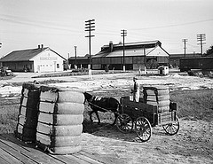 Cotton Gin, Dunn, NC, September 1938. Taken by Baker. From Conservation and Development Department, Travel and Tourism photo files, North Carolina State Archives, call #:  ConDev1413A-D.