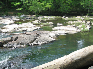 """Eno River."" The Shakori Indians lived along the river. Image courtesy of Flickr user Todd Martin, uploaded May 6, 2006."