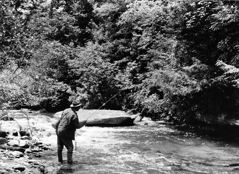 Fishing in stream in Pisgah National Forest, no date, unidentified fisherman. From Carolina Power and Light (CP&L) Photograph Collection, North Carolina State Archives, call #: PhC68_1_539.
