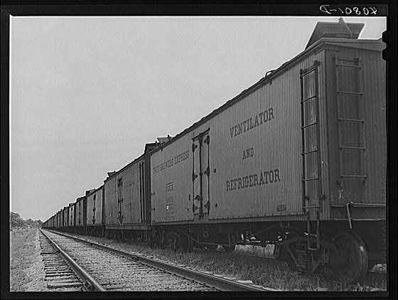 """Freight cars at Camden, North Carolina, grading station. All along the line are potatoes being loaded ."" Created by Jack Delano, 1940."