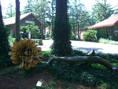 """Grovewood Gallery, Asheville, June 2009."" Image courtesy of Flickr user Rodny Dioxin."