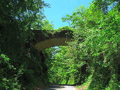 """Helen's Bridge, supposedly haunted, on the crest of Beaucatcher Mountain."" Image courtesy of Flickr user Richard Butner."