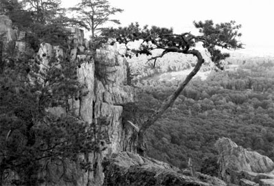 Black and white photograph taken from Crowders Mountain, by park visitor Angela Wright, 2015. Used courtesy of the N.C. Division of Parks and Recreation.