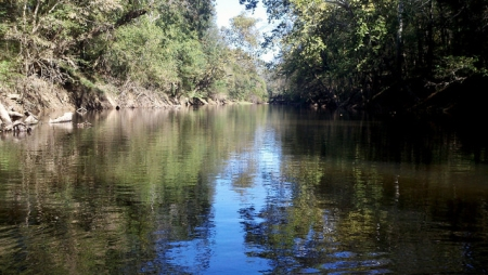 Photograph of the Deep River taken October 20, 2013, Chatham County, N.C.  From bobistraveling on FLICKR.  Used under Creative Commons License CC BY 2.0.