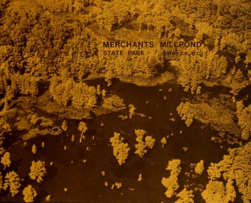 Aerial photograph of Merchants Millpond, ca. 1979. From the <i>Merchants Millpond State Park Master Plan</i>, 1979, N.C. Division of Parks and Recreation.