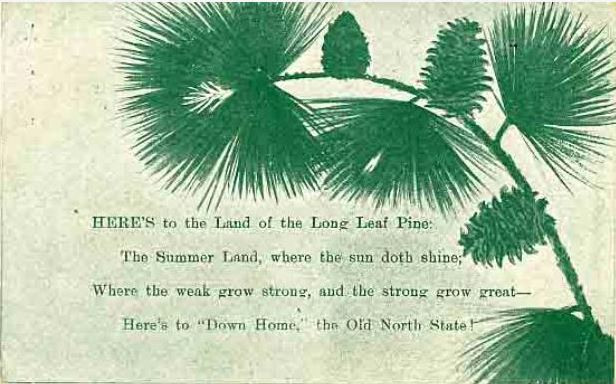 "Image of postcard with excerpt from Leonora Monteiro Martin's poem ""The Old North State,"" with drawing of green pine branch, 1908. Item H.1953.38.150 from the collection of the North Carolina Museum of History.  Used courtesy of the North Carolina Department of Natural and Cultural Resources."