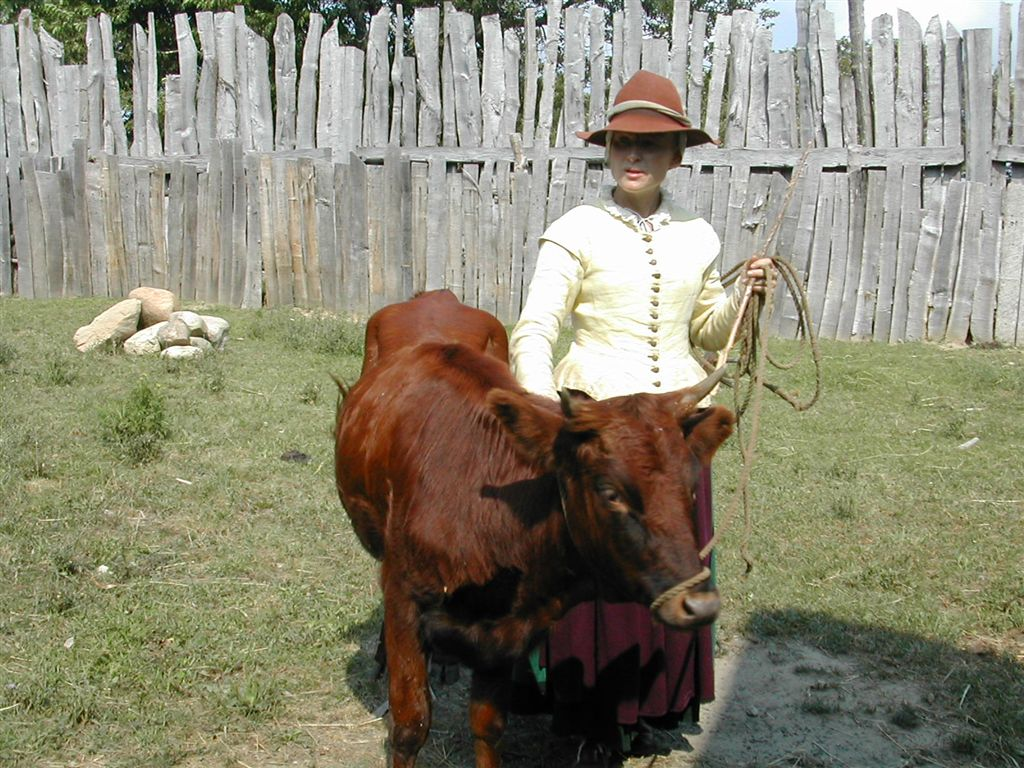 Colonial woman and cow