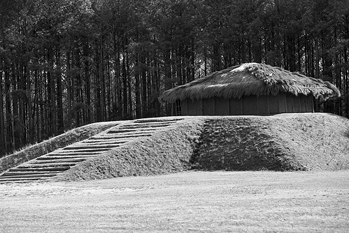 The reconstructed mound and temple at Town Creek Indian Mound State Historic Site. Photograph courtesy of North Carolina Division of Tourism, Film, and Sports Development.