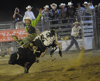 Bull rider, North Carolina