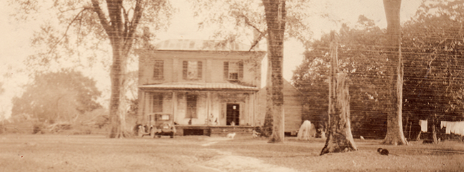 Photograph of Mulberry Grove, circa-1920-1940. Image from the State Library of North Carolina.