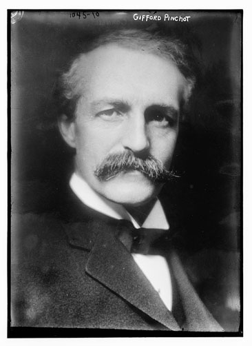 Portrait of Gifford Pinchot, undated, by Bain News Service, publisher. From the Bain Collections, Library of Congress Prints & Photographs Online Catalog.
