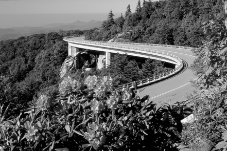Linn Cove Viaduct on the Blue Ridge Parkway at Grandfather Mountain. Photograph courtesy of North Carolina Division of Tourism, Film, and Sports Development.