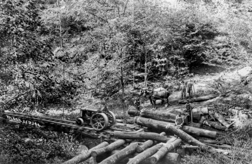 Logging operation in western North Carolina (date unknown). Horses were used to move logs to a staging area where they were picked up by a tractor on rails. North Carolina Collection, University of North Carolina at Chapel Hill Library.