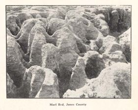 Marl Beds, Jones County. Image courtesy of DocSouth, UNC Libraries.