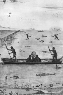 "Copy of John White drawing, ""Indians Fishing"", Large Canoe w/ Fire in center of it; 4 Indians are fishing from the canoe; various types of fish are shown in the water; in wooden wooden frame w/ glazing."" Roanoke Island; 1907. Image courtesy of the North Carolina Museum of History, access #: 1914.235.8 ."