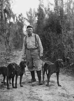 Plott Hound | NCpedia