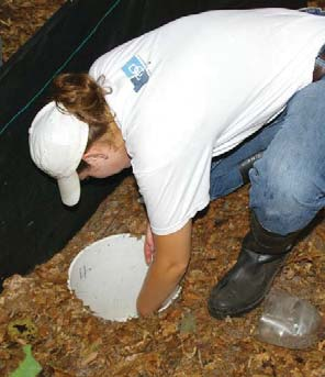 Ways to help monitor the southern leopard frog